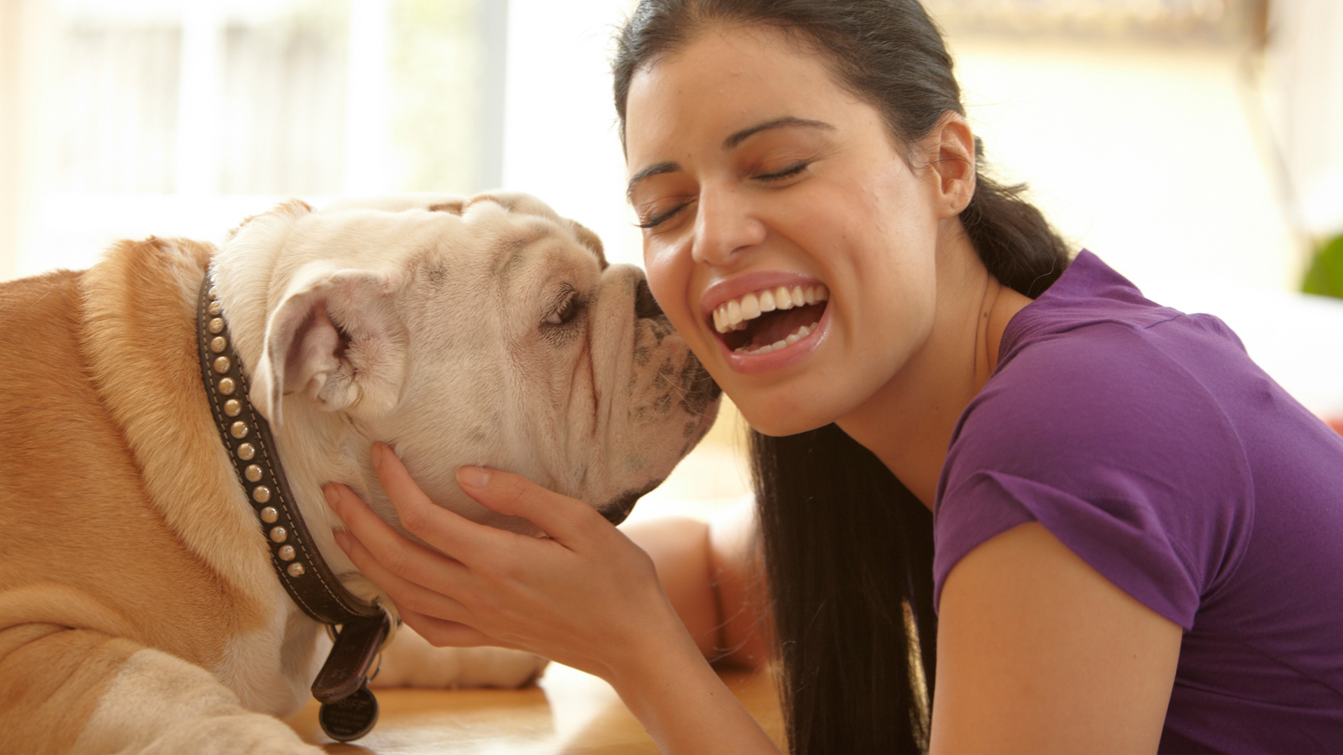 Become the best dog parent with these 5 basic commands!